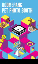 Boomerang Pet Photo Booth